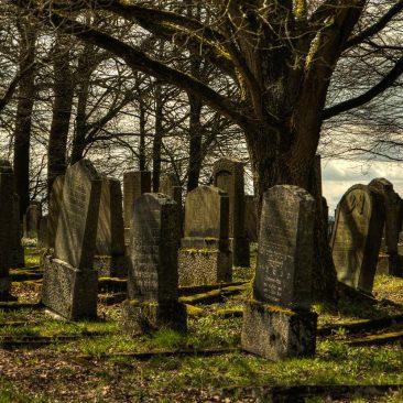 Visita à casa dos mortos