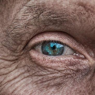 O olhar humano depende da luz